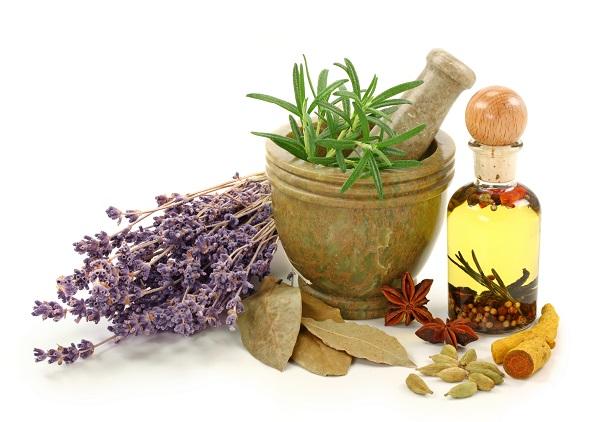 Какими бывают травы для похудения