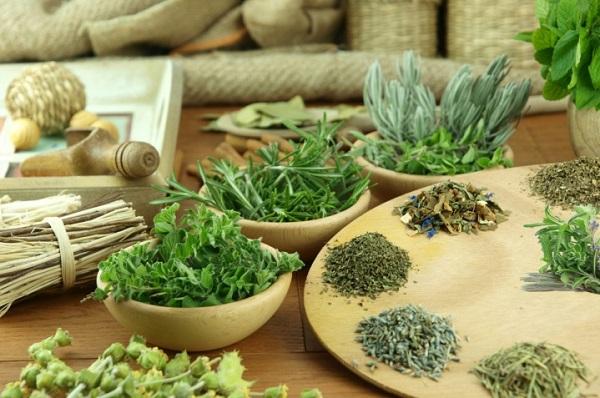 Травы повышающие метаболизм