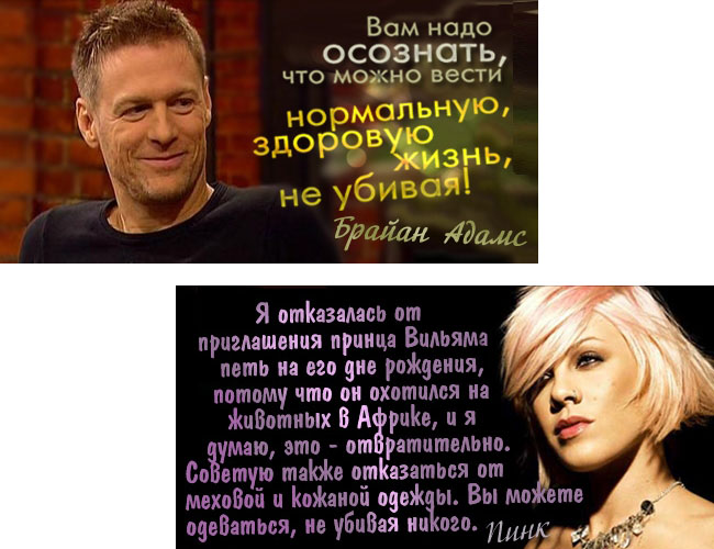 Более 500 известных вегетарианцев: российские и зарубежные звёзды кино, телевидения, музыки, спорта