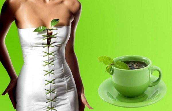 Эффективность зелёного чая как средства для похудения: лучшие сорта и эффективные рецепты