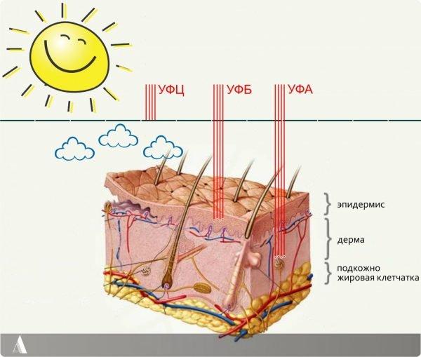 Комната солнца: как правильно загорать в солярии
