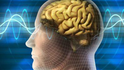 Кратковременная память – как улучшить?