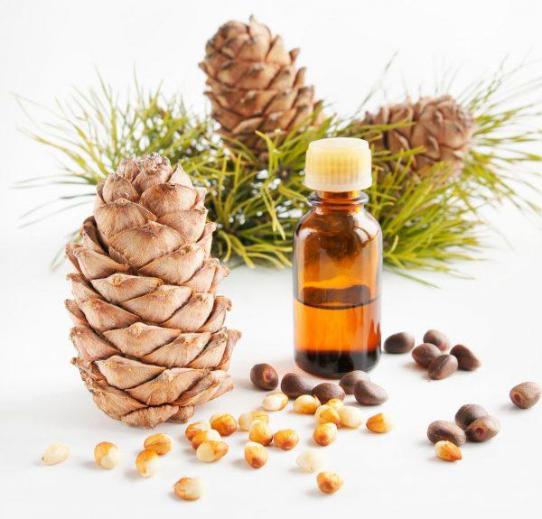 Масло розмарина: особенности применения для ухода за волосами