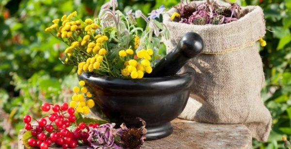 Оливковое масло для бровей и ресниц