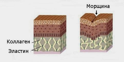 Профилактика и разглаживание морщин с помощью Димексида