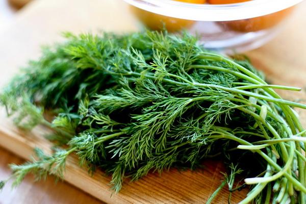 Укроп для похудения: 7 рецептов низкокалорийных блюд и напитков