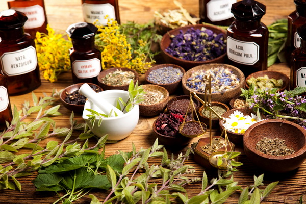 Жиросжигающие травы для похудения: какие выбрать и как применять