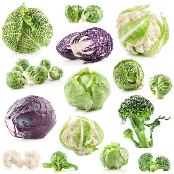 13 вариантов разгрузочного дня на капусте: выбираем сорт и способ приготовления