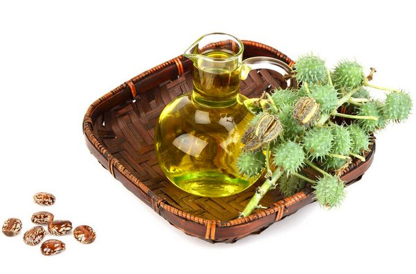 Касторовое масло для похудения: как правильно принимать, чтобы не навредить здоровью