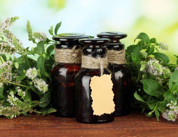 Масло мяты: польза и противопоказания, способы применения