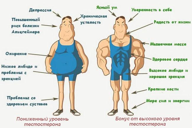 Ожирение у мужчин: как определить, чем опасно и как избавиться?