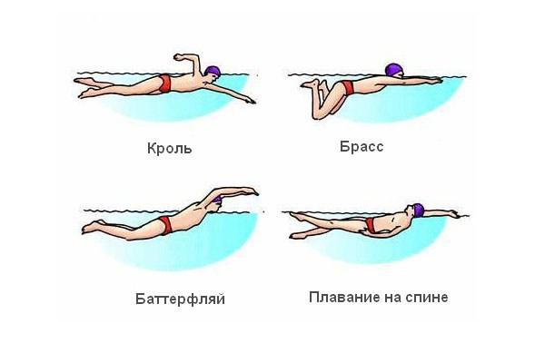 Плавание в бассейне как идеальный способ похудения и коррекции проблемной фигуры