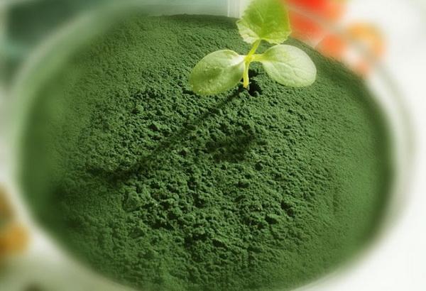 Спирулина: едим водоросли и худеем
