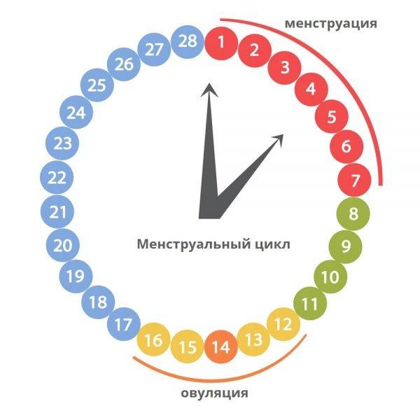 Безопасные дни цикла: как рассчитать, чтобы не забеременеть