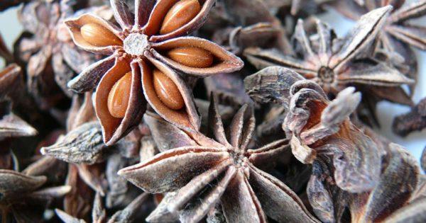 Польза анисового масла для красоты и здоровья