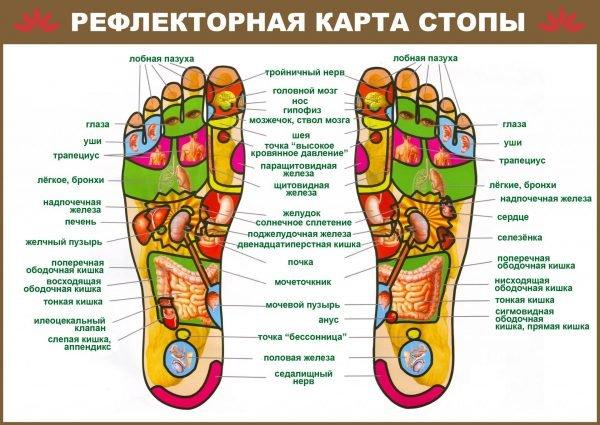 Всё о массажёре для ног «Марутака»