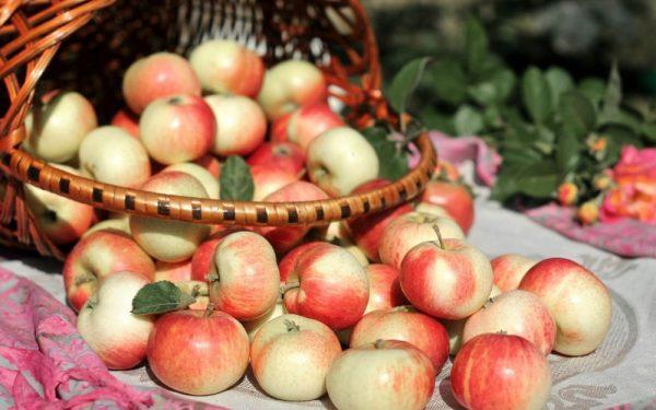 Яблочный уксус в борьбе с морщинами